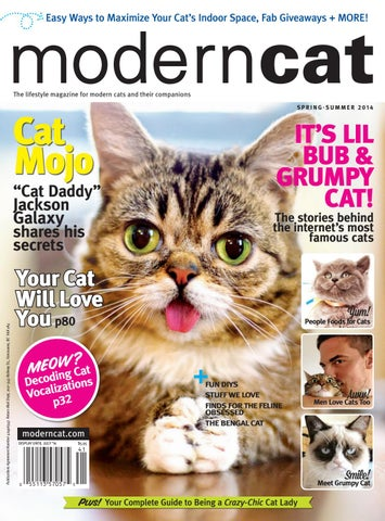 Modern Cat Spring/Summer 2014 by Modern Cat Magazine - issuu