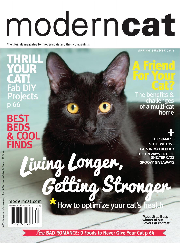 Astounding Modern Cat Spring Summer 2013 By Modern Cat Magazine Issuu Gamerscity Chair Design For Home Gamerscityorg