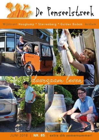 075f8004587 Penseelstreek85 by Wijkvereniging De Penseelstreek - issuu