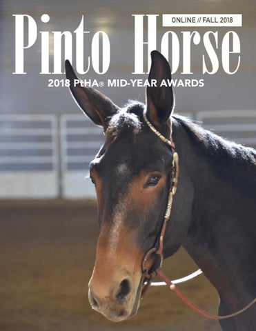 2018 PtHA® Fall Magazine by Pinto Horse Association of