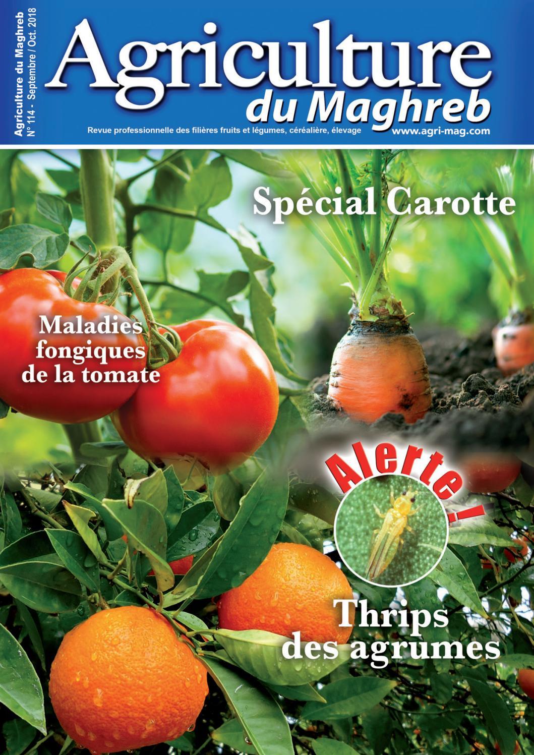 Comment Sauver Un Oranger Du Mexique agriculture du maghreb n° 114agriculture maghreb - issuu