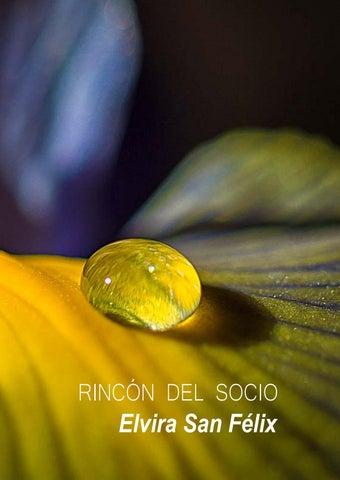Page 87 of Rincón del Socio