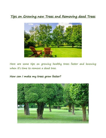 Tips On Growing New Trees And Removing Dead By