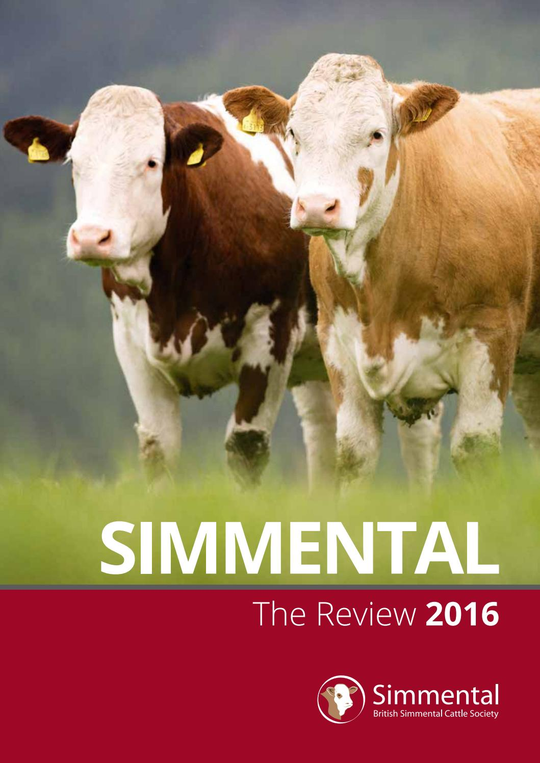 Simmental Annual Review 2016 By British Simmental Cattle