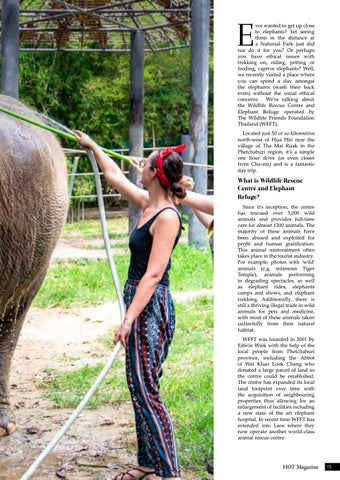 Page 73 of A Day Amongst Elephants