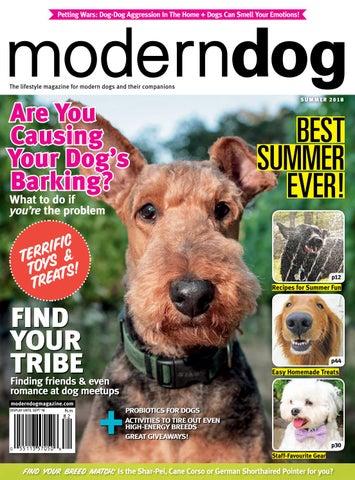 Modern Dog Summer 2018 By Modern Dog Magazine Issuu