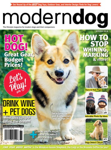 Modern Dog Spring 2018 by Modern Dog Magazine - issuu