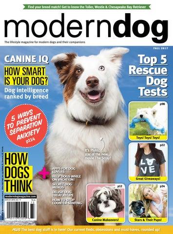 91328a423cf1 Modern Dog Summer 2018 by Modern Dog Magazine - issuu