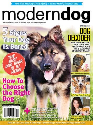 701e102166de Modern Dog Spring 2017 by Modern Dog Magazine - issuu