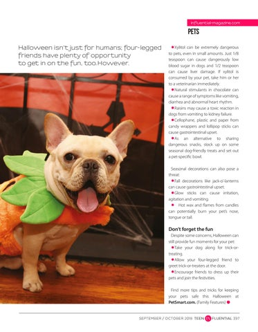 Page 397 of Keep Pets Safe This Halloween