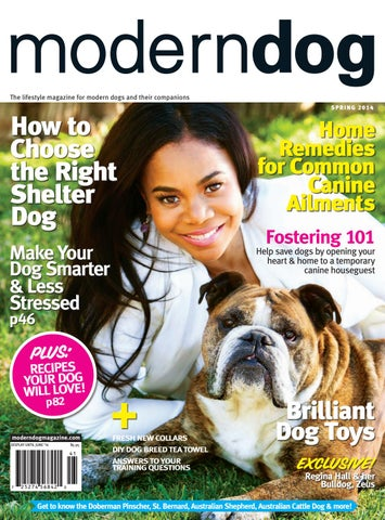 860592f95 The lifestyle magazine for modern dogs and their companions