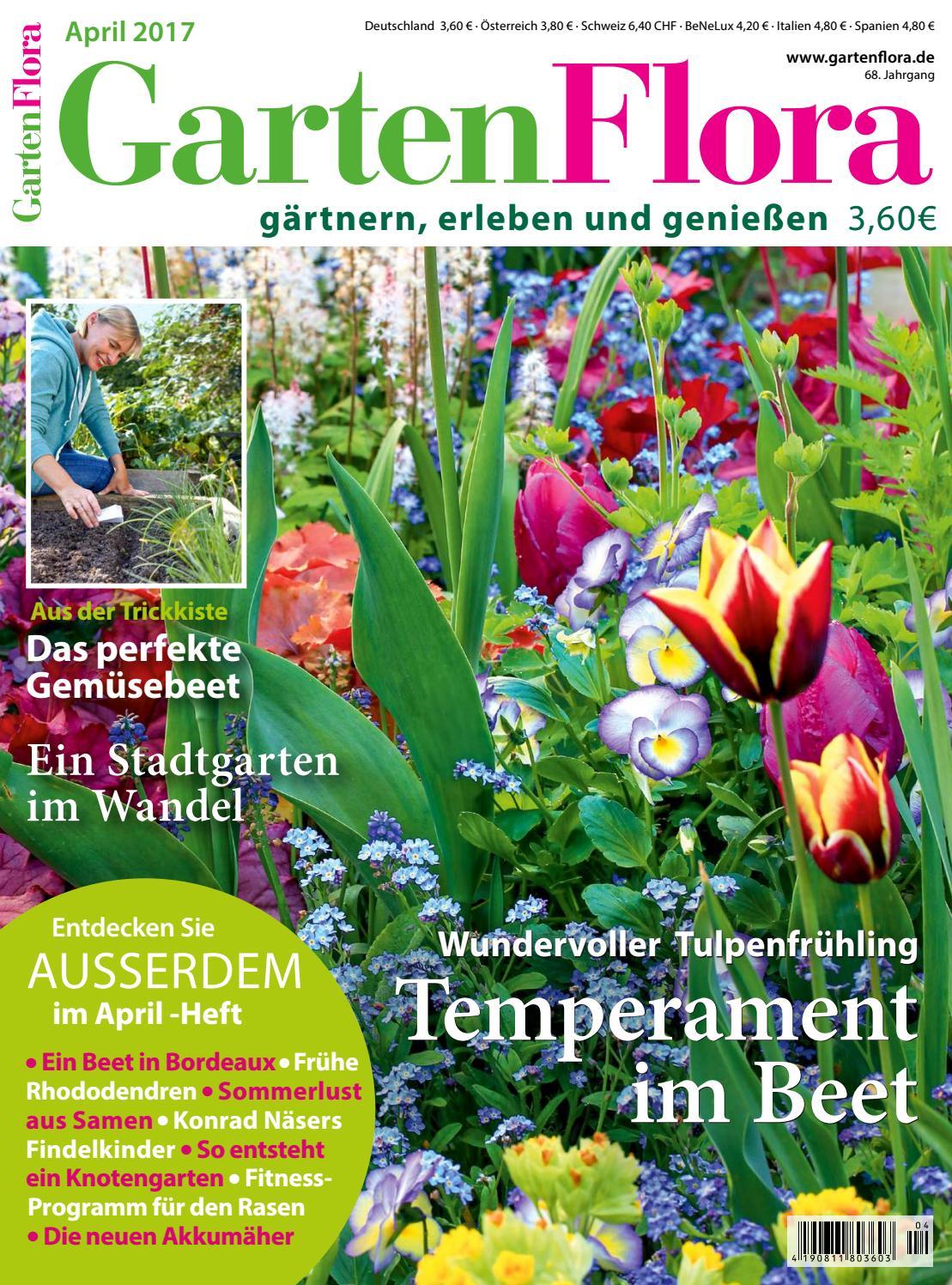 1000 Samen Gemüse Rettich Malaga Violett Ca