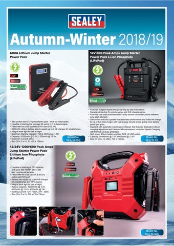 Sealey leaflet Autumn-Winter 2018/19 by InterCars SA - issuu