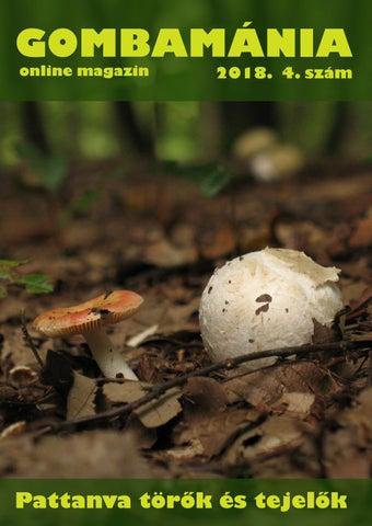 Gomba parazita a fa nevén, Trichuriasis