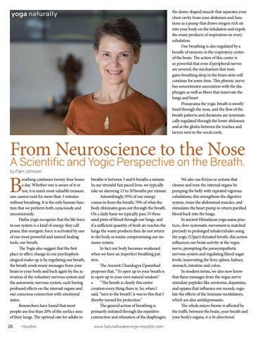 Page 20 of From Neuroscience to the Nose.