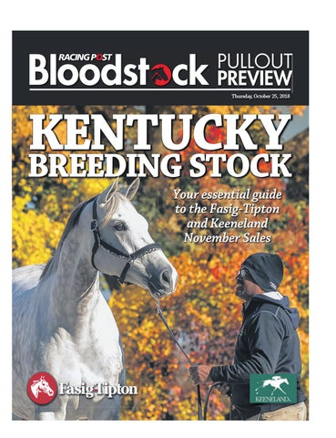 7b7cd10571ce8 Kentucky Breeding Stock Supplement by RACING POST BLOODSTOCK - issuu