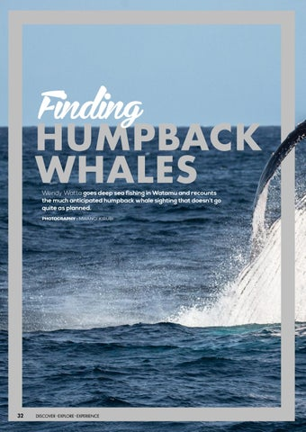 Page 34 of Finding Humpback Whales