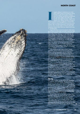 Page 35 of Finding Humpback Whales