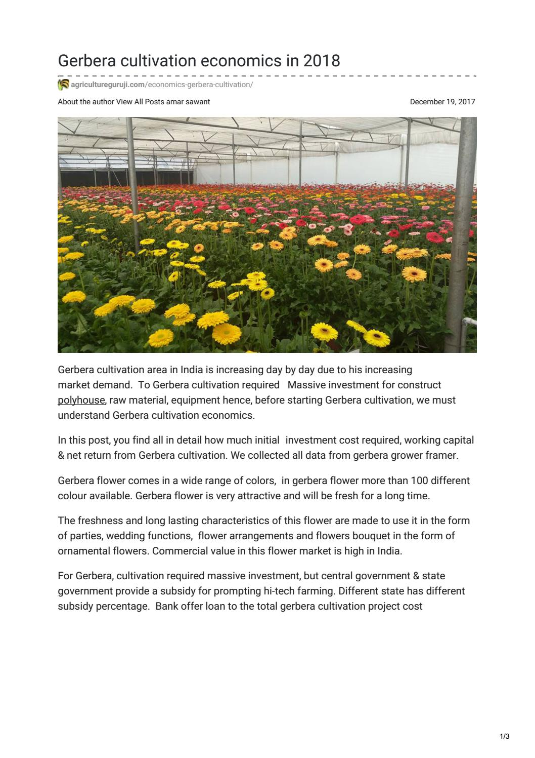 Gerbera Cultivation Economics In 2018 By Amar Sawant1986 Issuu