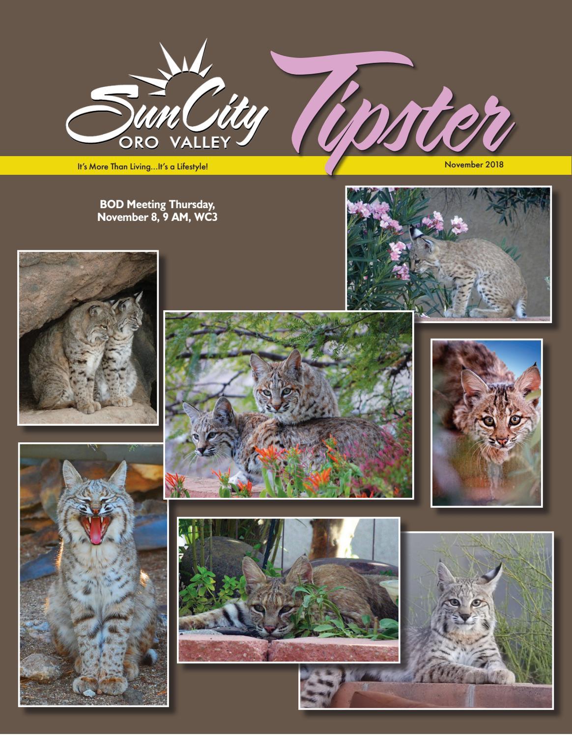 Sun City Oro Valley Tipster November 2018 by Sun City Oro