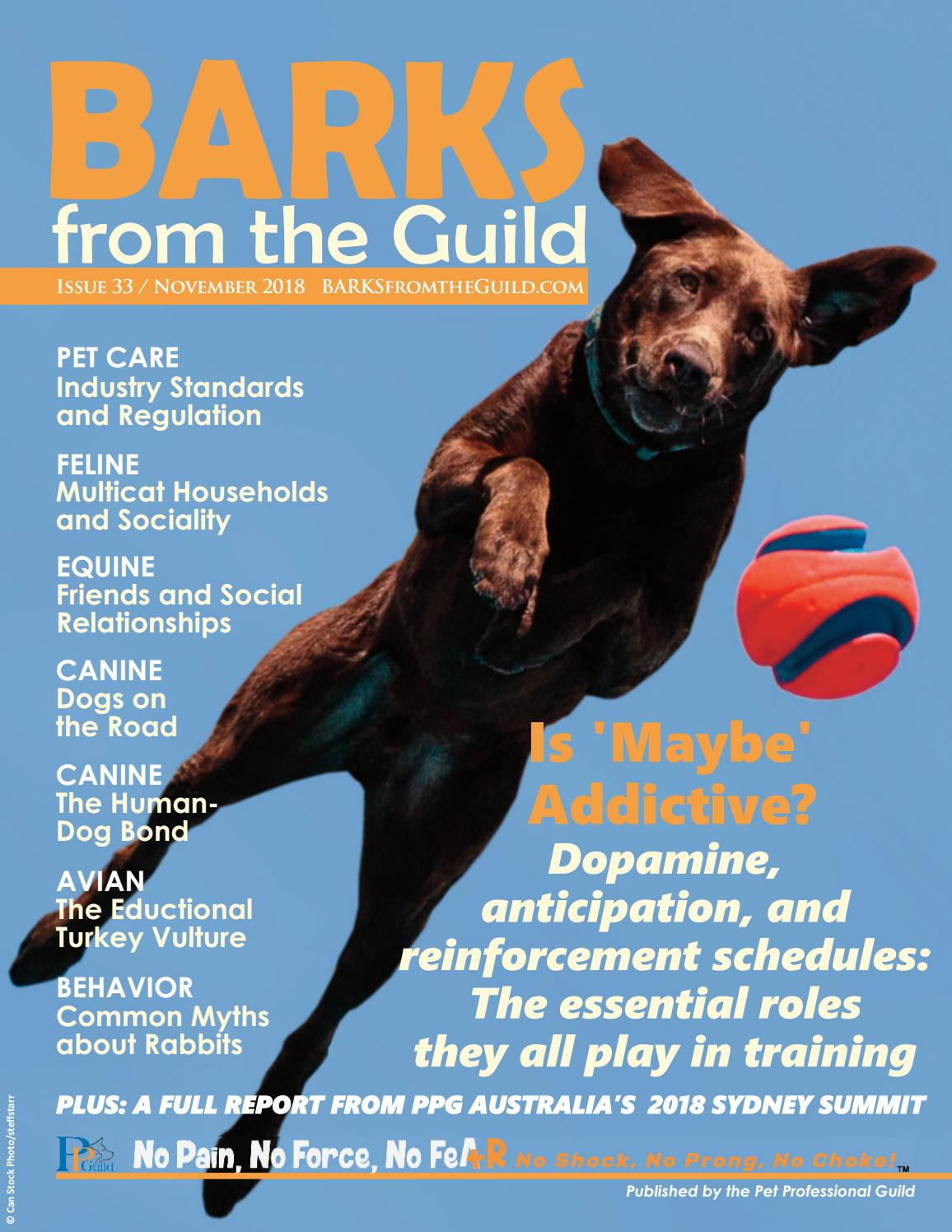 BARKS from the Guild November 2018 by The Pet Professional