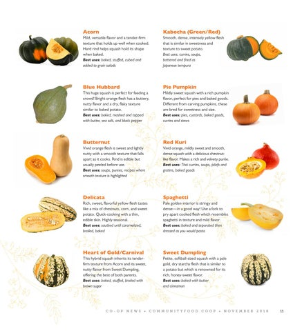 Page 11 of A Guide to Winter Squash