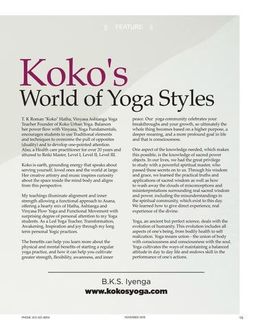 Page 15 of Koko's World of Yoga Styles