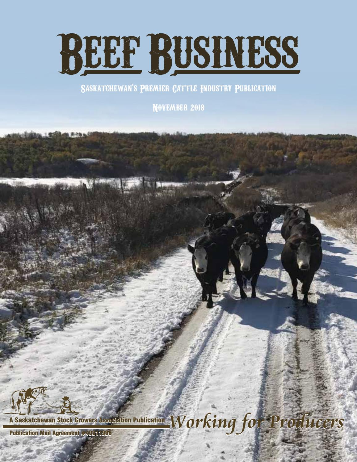 Beef Business November 2018 by Saskatchewan Stock Growers
