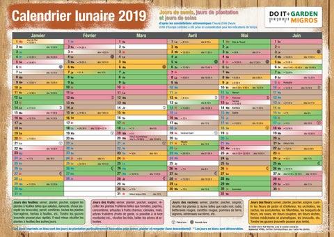 Calendrier Jardinage Lunaire 2019.Doit Mondkalender 2019 Fr By Migros Issuu