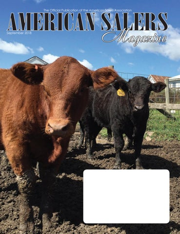 American Saler Magazine September 2018 By Livestockdirect Issuu