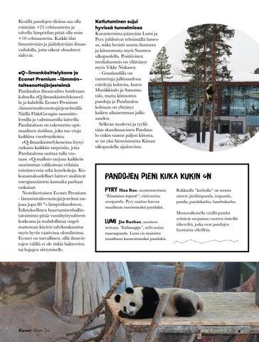 Page 5 of Tehtävä Ähtärissä
