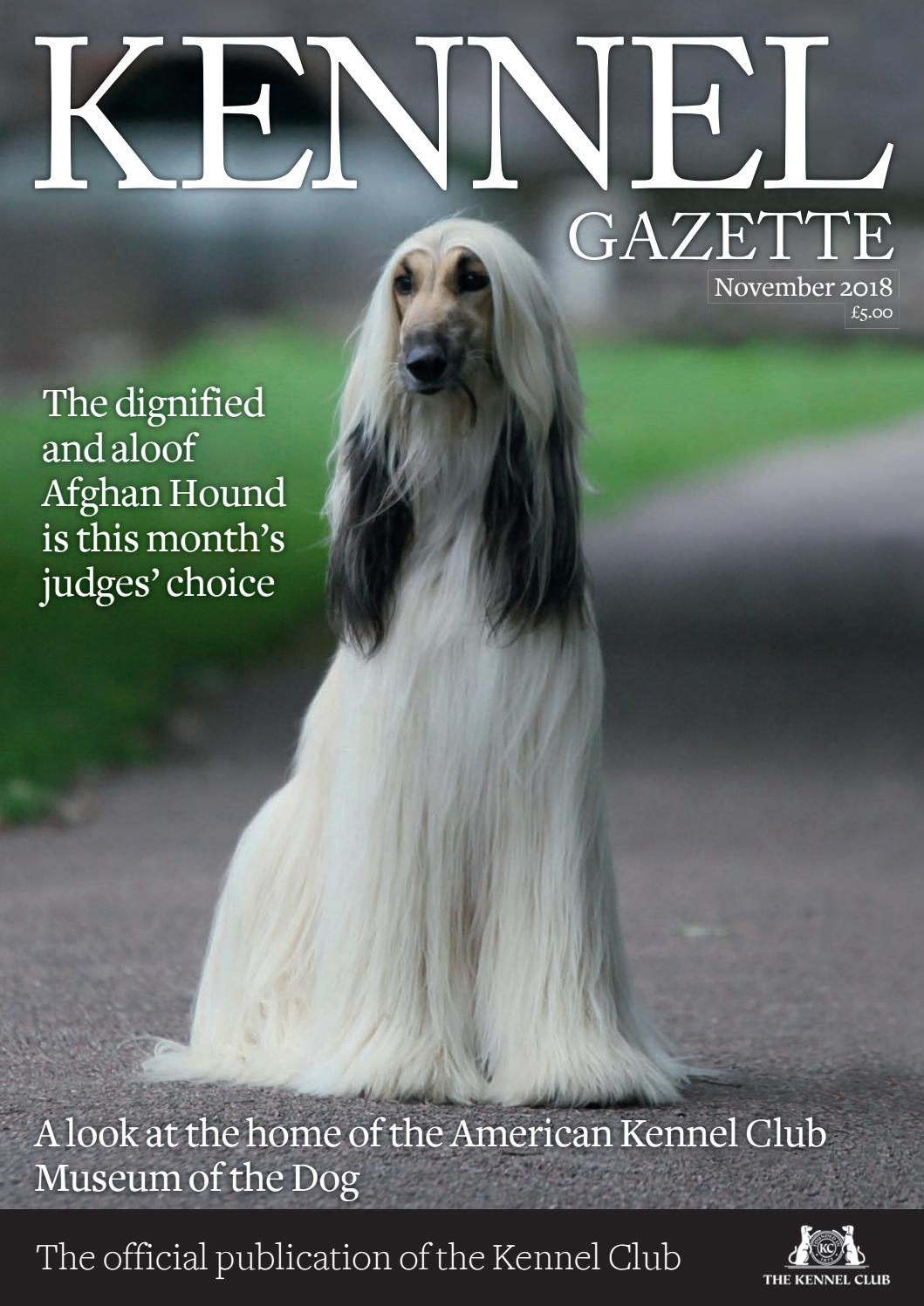 Afghan Hound Dog Show Ring Clip// Ring Number Holder