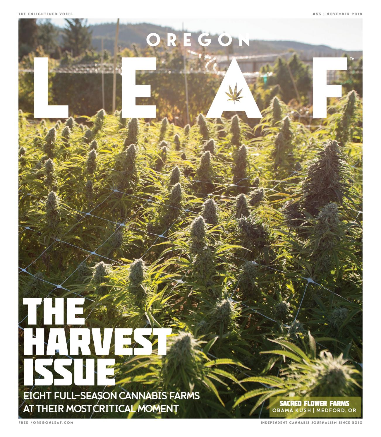 Oregon Leaf — Nov  2018 by Northwest Leaf / Oregon Leaf