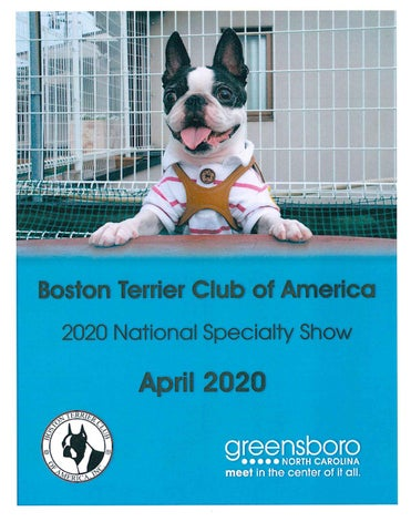 National Dog Show 2020.Boston Terrier Dog Speciality Show 2020 By Greensboro Cvb