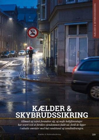 Page 219 of Kælder & skybrudssikring