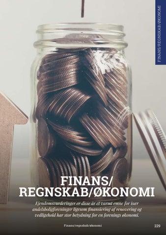 Page 229 of Finans/Regnskab/Økonomi