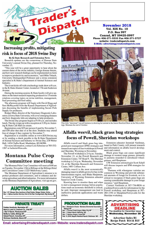 Mt Mtruck 4212 S Dumptrucks Sales Brochure Agriculture/farming Other Tractor Publications