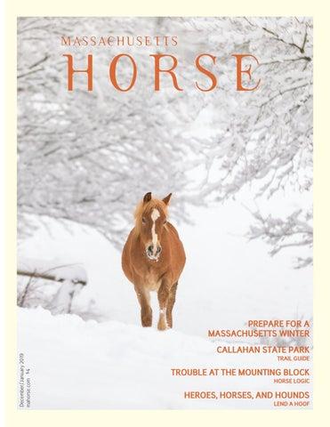 15735d29 Massachusetts Horse December/January 2019 by Community Horse Media ...