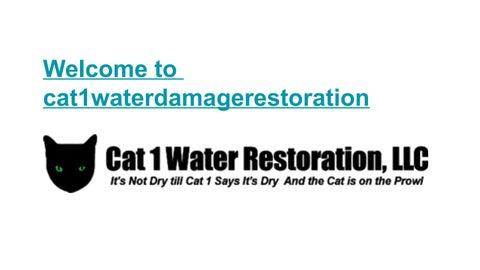 ae2dbf60 Mold Remediation Deerfield Beach FL, Mold Removal Deerfield Beach FL, Storm  Damage Repair Deerfield