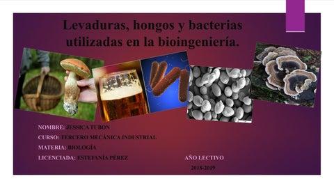 La infección por hongos puede causar disfunción eréctil