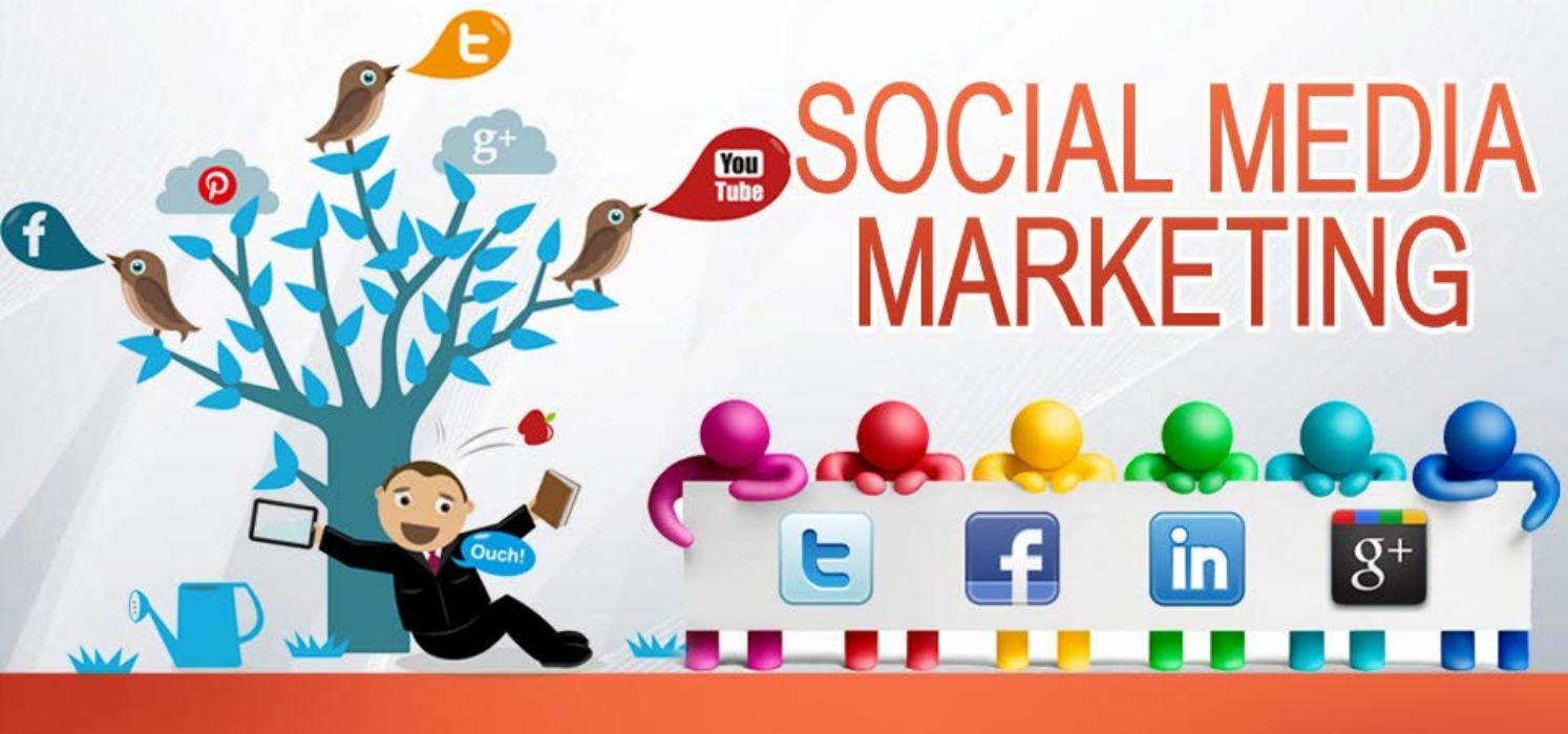 Best Digital Marketing Agency -SEO Agency, PPC, & Social Media Marketing