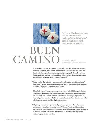 Page 24 of Buen Camino
