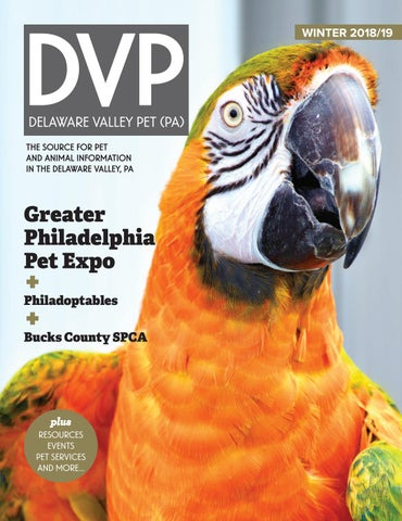 Delaware Valley Pet (PA) Winter 2018/19 by Delaware Valley