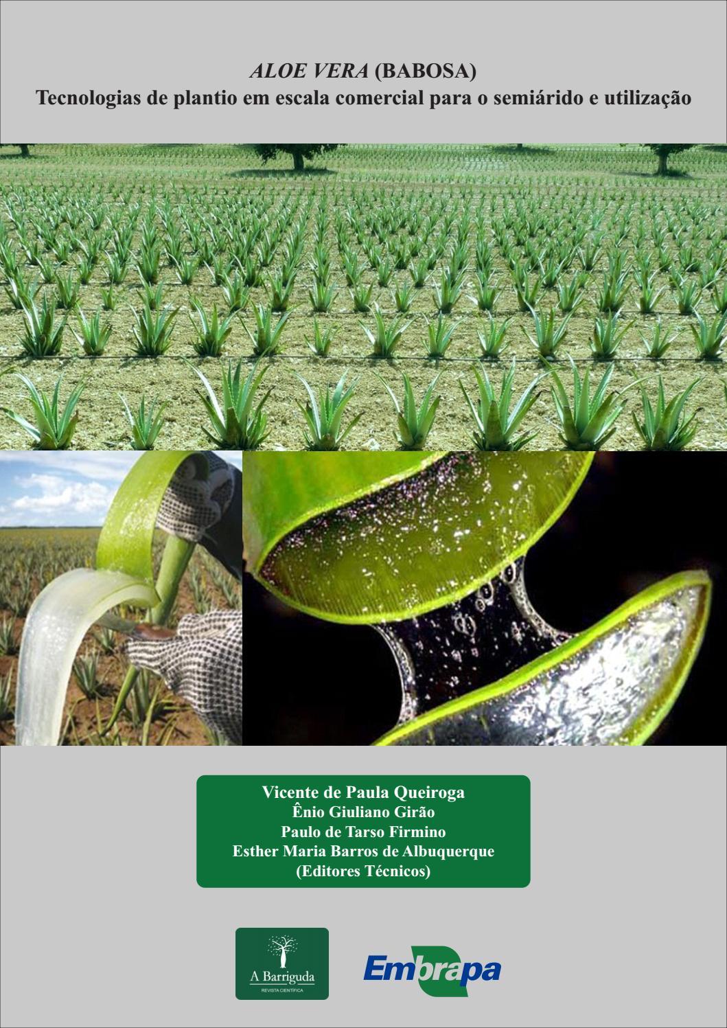 Aloe vera (Babosa)  Tecnologias de plantio em escala comercial para o  semiárido e utilização by abarriguda - issuu f9d045b6c47