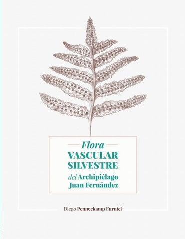 bfd897a43fce Flora Vascular Silvestre del Archipiélago Juan Fernández by Fernando ...