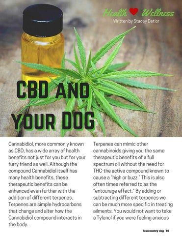 Page 10 of CBD and Your Dog