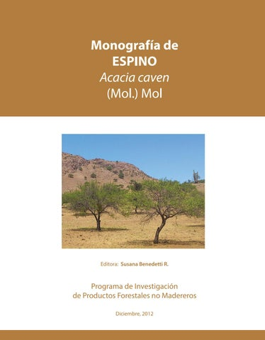 Monografía De Espino Acacia Caven Mol Mol By Fernando Ruz