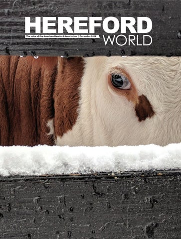 December 2018 Hereford World By American Hereford Association And