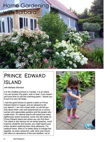 Page 16 of Home Gardening with Barbara: Prince Edward Island