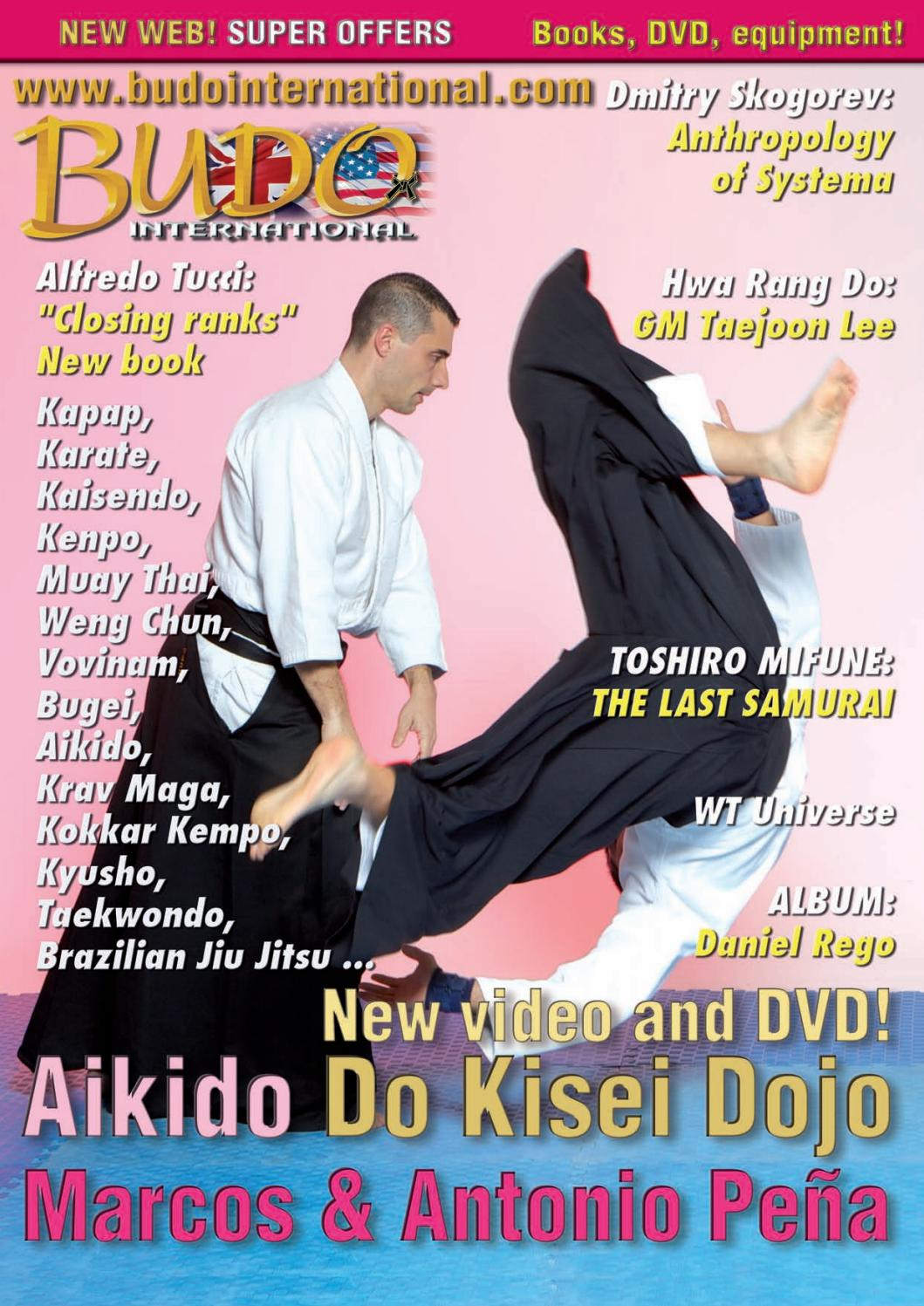 2 SHOTOKAN TIGER KARATE-DO LOGO DECAL//STICKER WINDOW FIGHTER MMA MARTIAL ARTS